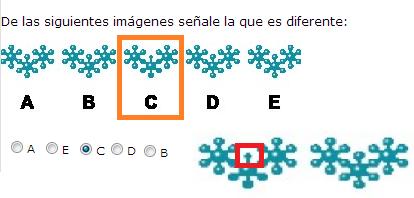 imagen 4 prueba
